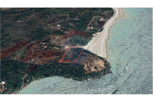 Land - For Sale - Dar es Salaam - 31 - 115015007-10