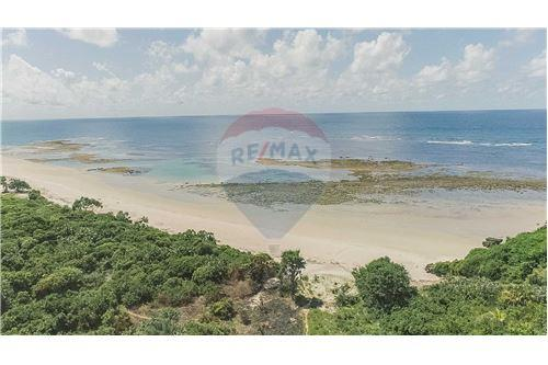 Land - For Sale - Dar es Salaam - 12 - 115015007-9
