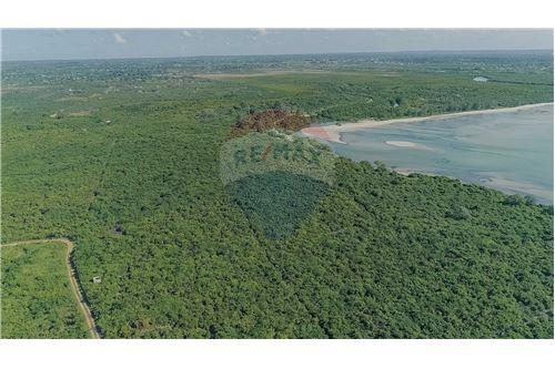 Land - For Sale - Dar es Salaam - 3 - 115015007-11