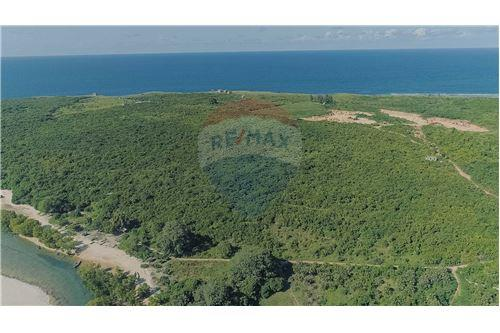 Land - For Sale - Dar es Salaam - 11 - 115015007-11