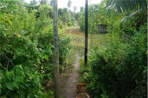 Land - For Sale - Zanzibar - 17 - 115006033-13