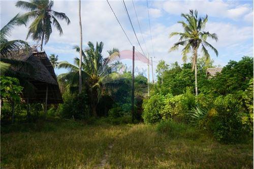 Land - For Sale - Zanzibar - 18 - 115006033-13