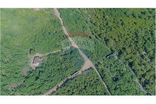 Land - For Sale - Dar es Salaam - 16 - 115015007-11