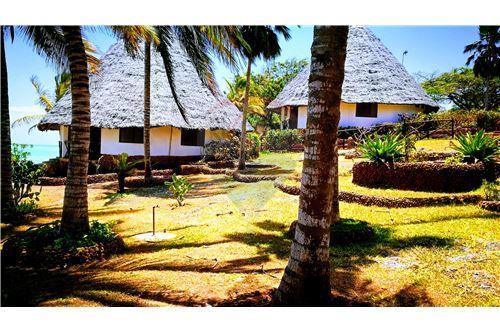 Land - For Sale - Zanzibar - 33 - 115006002-99