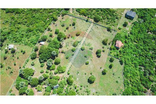 Land - For Sale - Dar es Salaam - 16 - 115015007-9