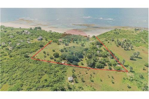 Land - For Sale - Dar es Salaam - 11 - 115015007-9
