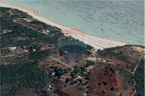 Land - For Sale - Dar es Salaam - 26 - 115015007-9