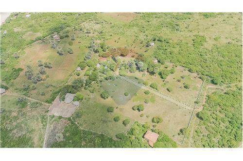 Land - For Sale - Dar es Salaam - 17 - 115015007-9