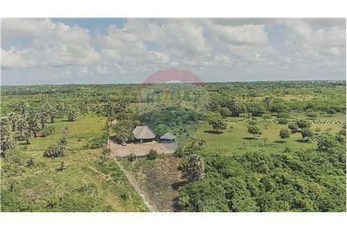 Land - For Sale - Dar es Salaam - 20 - 115015007-9