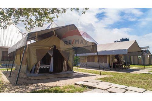 Lodge - For Sale - Coast - 5 - 115015006-8