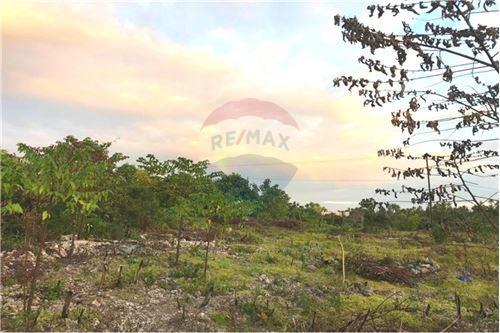 Land - For Sale - Zanzibar - 13 - 115006033-13