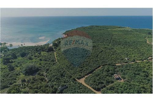 Land - For Sale - Dar es Salaam - 4 - 115015007-11