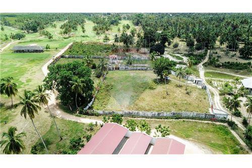Land - For Sale - Zanzibar - 17 - 115006002-143