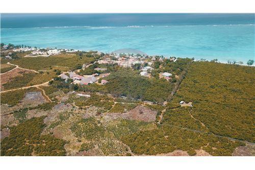 Land - For Sale - Zanzibar - 45 - 115006002-99