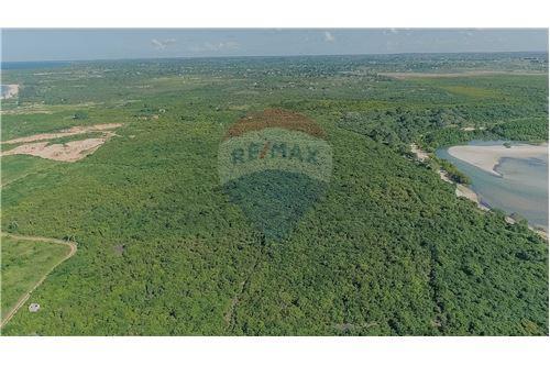 Land - For Sale - Dar es Salaam - 12 - 115015007-11
