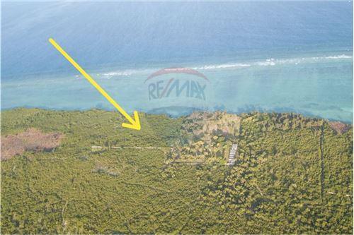 Land - For Sale - Zanzibar - 18 - 115006024-2