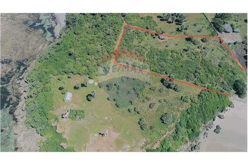 Land - For Sale - Dar es Salaam - 28 - 115015007-10