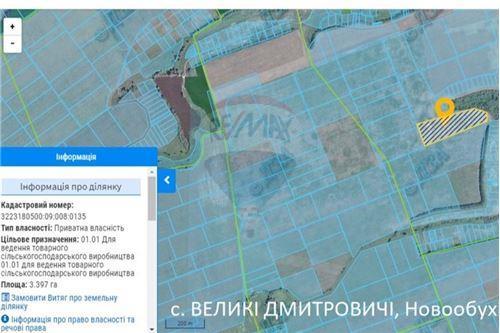 Земельна ділянка - Продаж - Великі Дмитровичі - 2 - 116020006-5