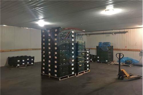 Продаж бізнесу - Продаж - Бородянка - Овощехранилище - 116020003-6