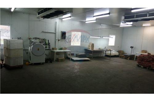 Продаж бізнесу - Продаж - Бородянка - Производственное помещение - 116020003-6