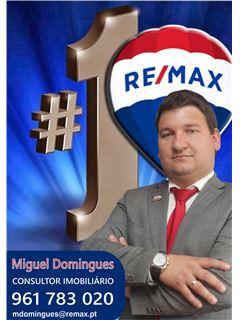 Miguel Domingues - Chefe de Equipa Miguel Domingues - RE/MAX - Magistral 4
