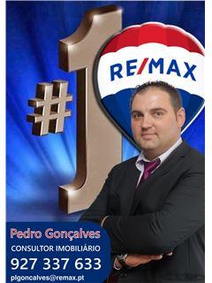 Pedro Gonçalves - Chefe de Equipa - RE/MAX - Magistral 3