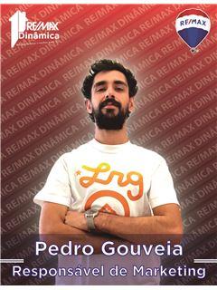 Pedro Gouveia - Responsável de Marketing - RE/MAX - Dinâmica