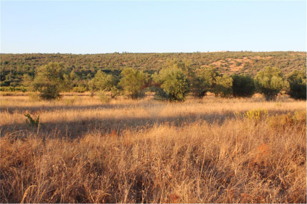 960 SqM Land For Sale, located at California City, California | United  States