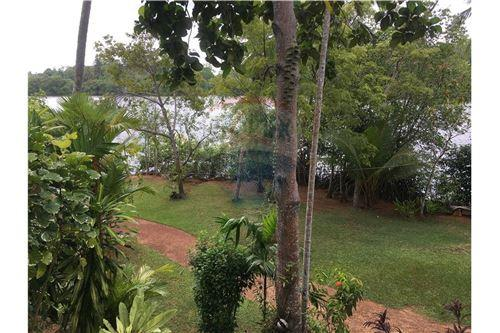 Restaurant with Rooms - For Sale - Galle - 46 - 124014003-36