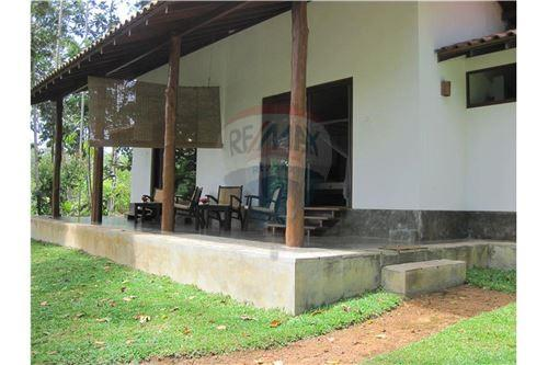 Restaurant with Rooms - For Sale - Galle - 62 - 124014003-36