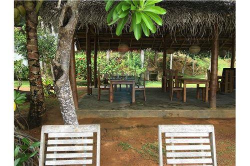 Restaurant with Rooms - For Sale - Galle - 60 - 124014003-36