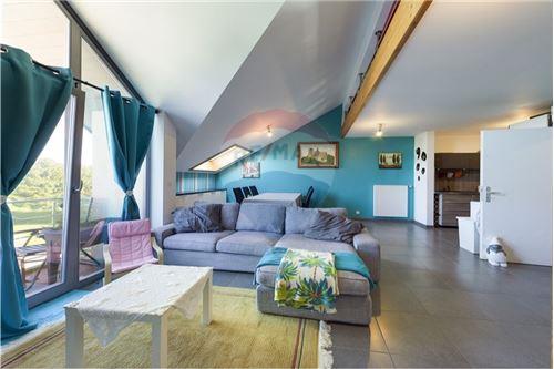 Duplex - For Sale - Gouvy, Belgium - RE/MAX Exclusive, spécialiste de l - LivingRoom/DiningRoom - 210031005-3