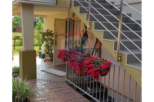 Kuća  - Za prodaju - Bilje, Hrvatska - Terasa - 300491001-153