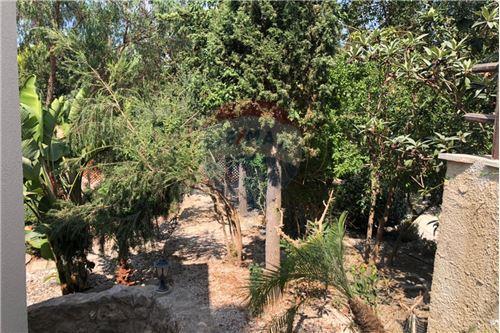 Villa - For Sale - Tala, Paphos - 17 - 480071028-22