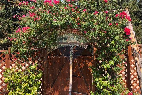Villa - For Sale - Tala, Paphos - 26 - 480071028-22