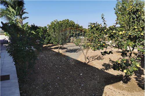 Bungalow - For Sale - Polemi, Paphos - 12 - 480071025-69