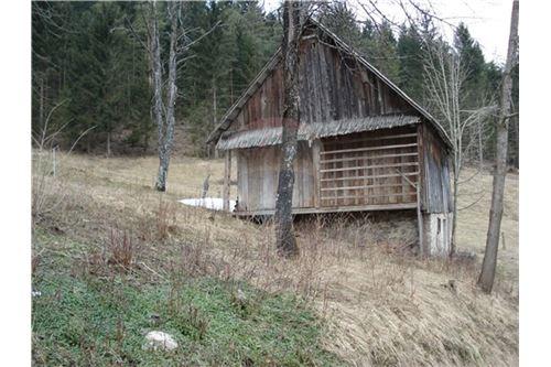 Εξοχικό - Πώληση - Loški Potok, Dolenjska - 10 - 490341002-330