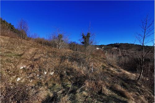 แปลงที่ดินสำหรับการก่อสร้างอาคาร - ขาย - Nova Gorica, Primorska Severna - 9 - 490371004-41