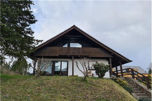 Hiša - Prodamo - Celje, Savinjska - 3 - 490281026-107