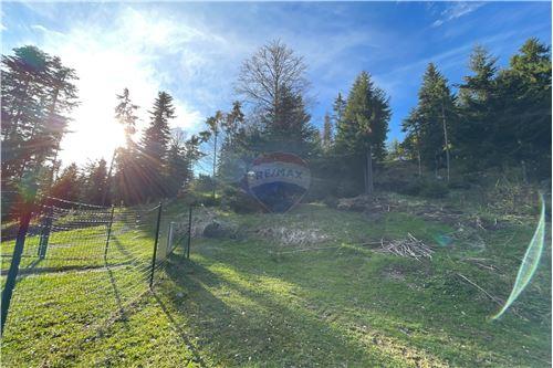 Terreno Edificable - Venta - Zreče, Savinjska - 2 - 490281028-43
