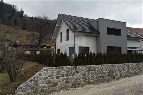 Hiša - Prodamo - Mislinja, Koroška - 3 - 490281024-76