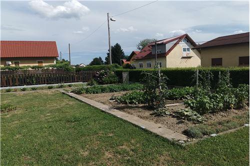Hiša - Prodamo - Ptuj, Podravje - 24 - 490151001-975