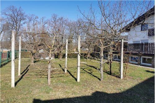 Hiša - Prodamo - Radenci, Pomurje - 29 - 490151001-966