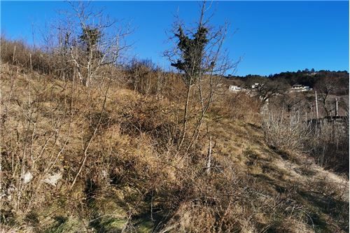 แปลงที่ดินสำหรับการก่อสร้างอาคาร - ขาย - Nova Gorica, Primorska Severna - 10 - 490371004-41