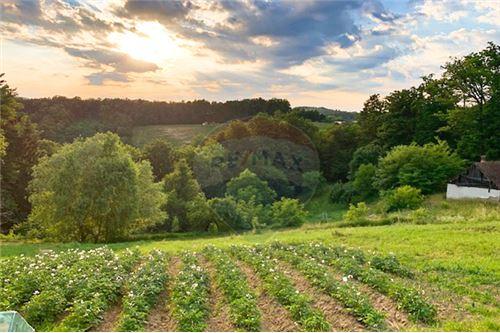 Plot of Land for Hospitality Development - For Sale - Zgornja Kungota, Podravje region - 10 - 490321062-18