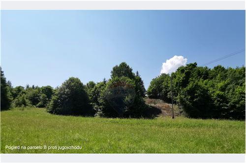 Nezazidljivo zemljišče - Prodamo - Ig, Ljubljana (okolica) - 11 - 490191101-17