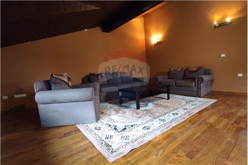Condo/Apartment - For Rent/Lease - Belgrade  - 1 - 500021004-208