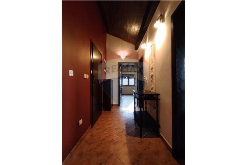 Condo/Apartment - For Rent/Lease - Belgrade  - 9 - 500021004-208