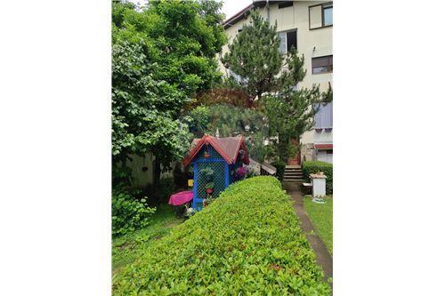 Condo/Apartment - For Rent/Lease - Belgrade  - 19 - 500021004-208