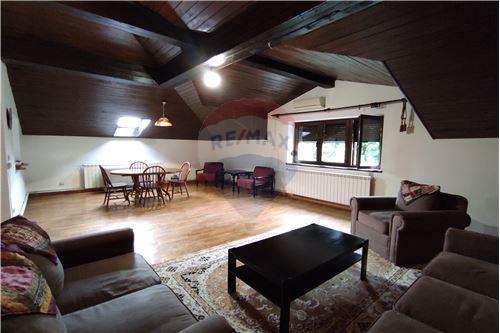 Condo/Apartment - For Rent/Lease - Belgrade  - 3 - 500021004-208